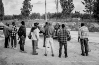 irregular migrants farm workers italy
